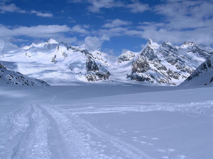 Foto: Andreas Koller / Ski Tour / Berner Alpen Durchquerung 1: Louwihorn (3777m) / Konkordiaplatz, darüber das Finsteraarhorn (4273 m) / 16.04.2009 22:45:55