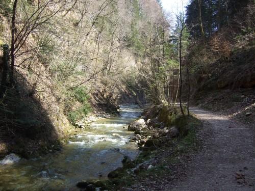 Foto: hofchri / Mountainbike Tour / Gaisberg (1287 m) über Glasenbachklamm / Auffahrt in der Glasenbachklamm / 19.04.2009 09:23:59