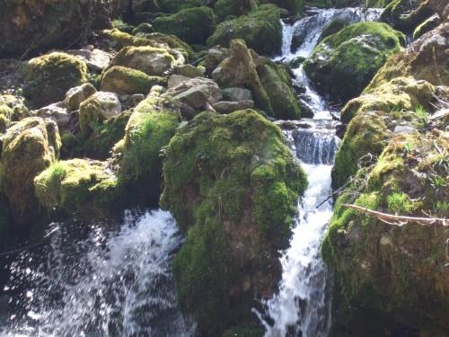 Foto: hofchri / Mountainbike Tour / Gaisberg (1287 m) über Glasenbachklamm / Im Frühjahr viele Wasserfälle / 19.04.2009 09:24:41