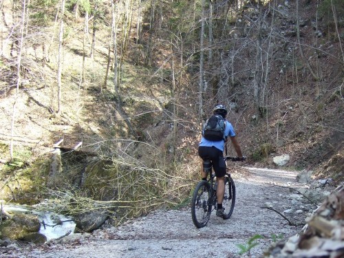 Foto: hofchri / Mountainbike Tour / Gaisberg (1287 m) über Glasenbachklamm / 19.04.2009 09:24:57