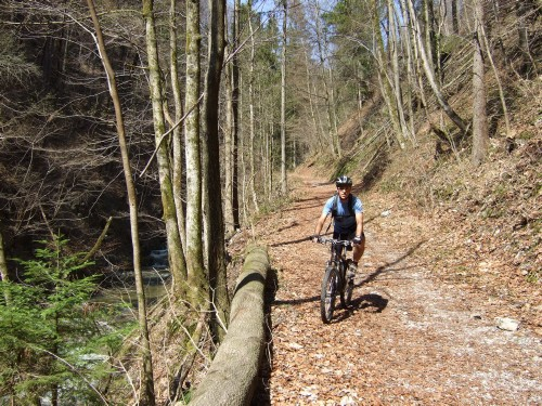 Foto: hofchri / Mountainbike Tour / Gaisberg (1287 m) über Glasenbachklamm / 19.04.2009 09:25:04