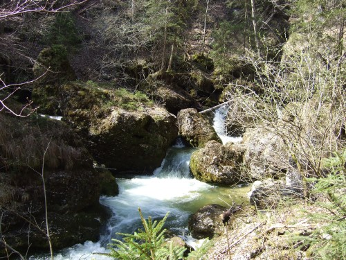 Foto: hofchri / Mountainbike Tour / Gaisberg (1287 m) über Glasenbachklamm / 19.04.2009 09:25:12