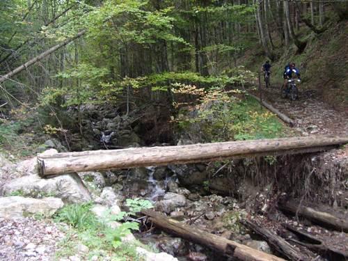 Foto: hofchri / Mountainbike Tour / Stoißer- und Steineralmrunde (1287 m) / 19.04.2009 15:27:16
