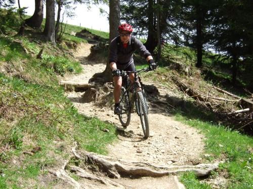 Foto: hofchri / Mountainbike Tour / Stoißer- und Steineralmrunde (1287 m) / kurzer Trail von der Stoißeralm / 19.04.2009 15:25:15