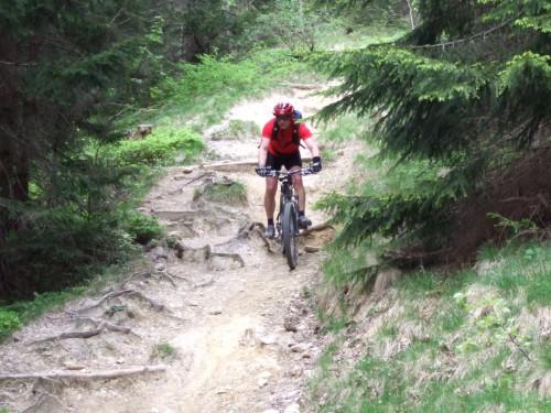 Foto: hofchri / Mountainbike Tour / Stoißer- und Steineralmrunde (1287 m) / downhill zur Steineralm / 19.04.2009 15:26:07