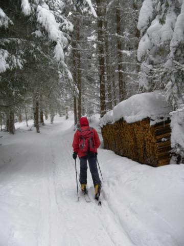 Foto: Wolfgang Lauschensky / Ski Tour / Gstoder über die Seetaler Hütten / im flachen Wald / 14.02.2012 21:41:50