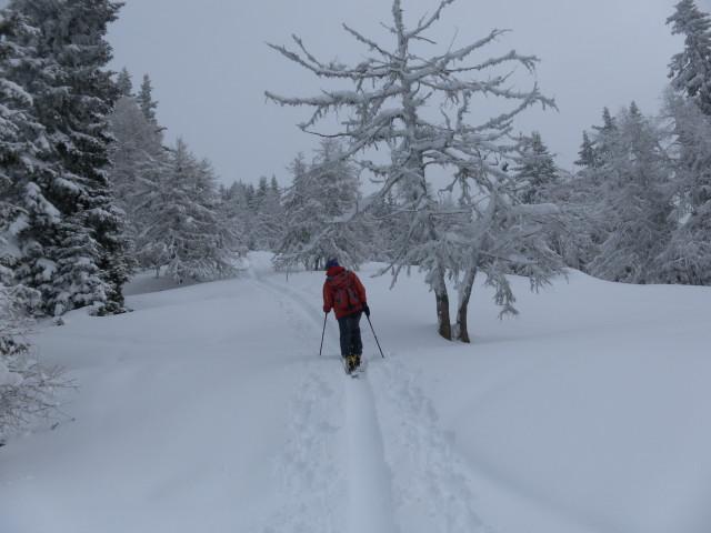 Foto: Wolfgang Lauschensky / Ski Tour / Gstoder über die Seetaler Hütten / am Gipfelrücken / 14.02.2012 21:41:10