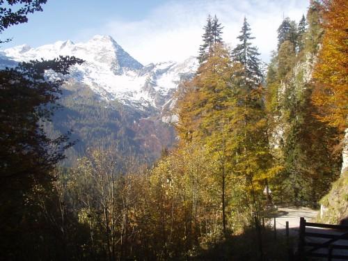 Foto: hofchri / Mountainbike Tour / Rund um den Hochkranz über Kallbrunnalm (1495m) / 27.04.2009 22:17:17