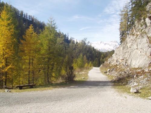 Foto: hofchri / Mountainbike Tour / Rund um den Hochkranz über Kallbrunnalm (1495m) / 27.04.2009 22:17:53