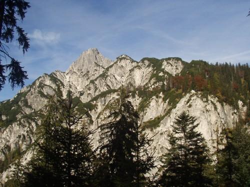 Foto: hofchri / Mountainbike Tour / Rund um den Hochkranz über Kallbrunnalm (1495m) / 27.04.2009 22:18:20