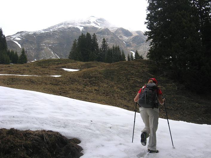 Foto: Andreas Koller / Wander Tour / Über die Karalm auf den Sladinkopf (2305 m) / 04.05.2009 17:34:45