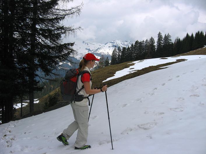 Foto: Andreas Koller / Wander Tour / Über die Karalm auf den Sladinkopf (2305 m) / 04.05.2009 17:34:39