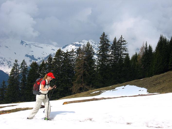 Foto: Andreas Koller / Wander Tour / Über die Karalm auf den Sladinkopf (2305 m) / 04.05.2009 17:34:21