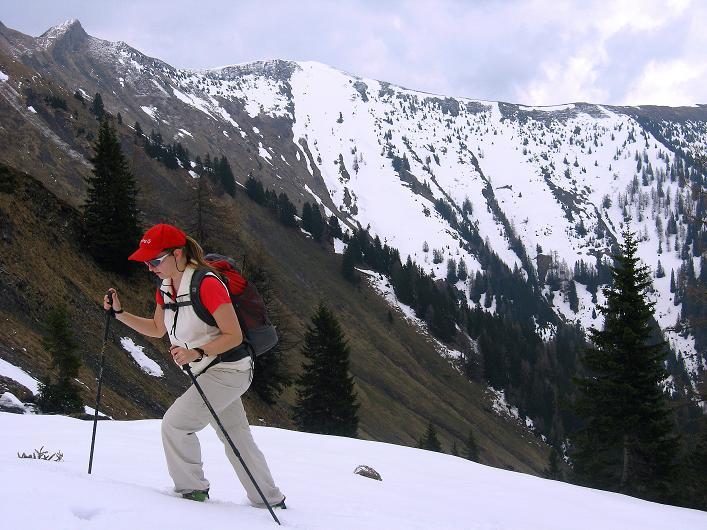 Foto: Andreas Koller / Wander Tour / Über die Karalm auf den Sladinkopf (2305 m) / 04.05.2009 17:33:57