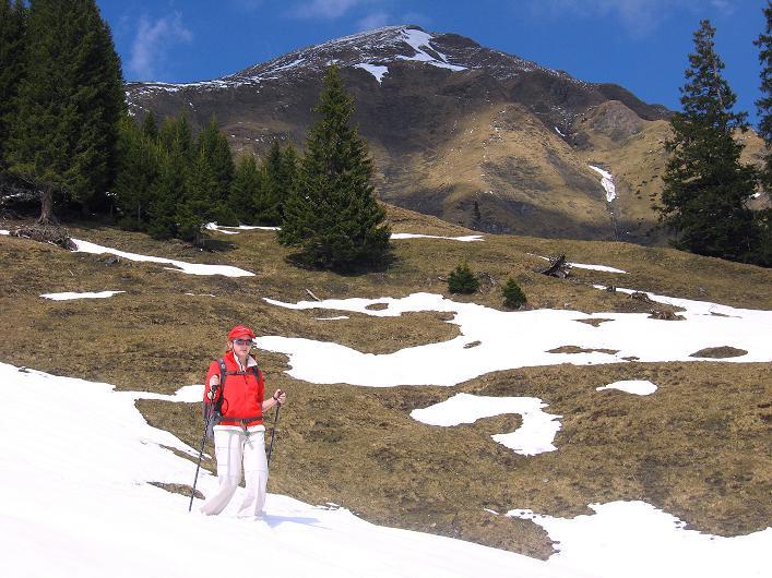 Foto: Andreas Koller / Wander Tour / Über die Karalm auf den Sladinkopf (2305 m) / 04.05.2009 17:19:52