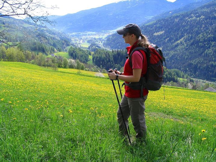 Foto: Andreas Koller / Wander Tour / Über die Dörfler Alm auf den Gstoder (2140m) / 10.05.2009 22:01:27
