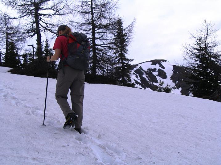 Foto: Andreas Koller / Wander Tour / Über die Dörfler Alm auf den Gstoder (2140m) / Anstieg über die Dörfler Alm / 10.05.2009 21:58:29