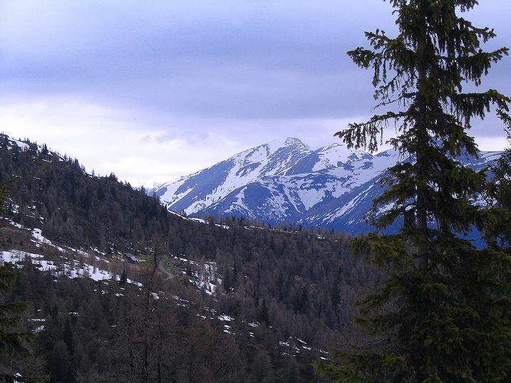 Foto: Andreas Koller / Wander Tour / Über die Dörfler Alm auf den Gstoder (2140m) / 10.05.2009 21:58:14