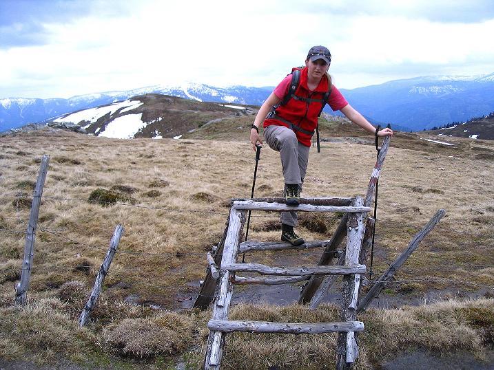 Foto: Andreas Koller / Wander Tour / Über die Dörfler Alm auf den Gstoder (2140m) / 10.05.2009 21:56:05