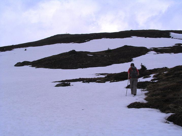 Foto: Andreas Koller / Wander Tour / Über die Dörfler Alm auf den Gstoder (2140m) / Gipfelflanke / 10.05.2009 21:55:56