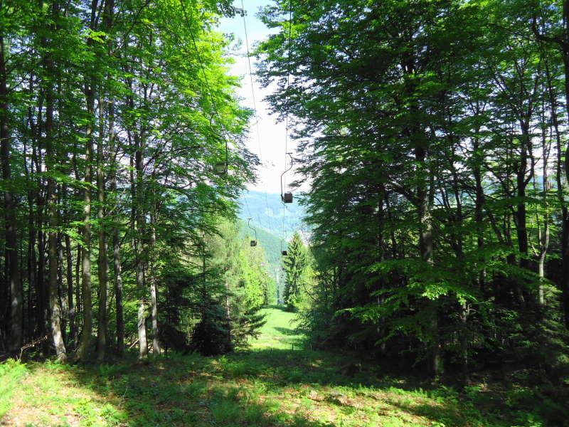 Foto: Günter Siegl / Wander Tour / Muckenkogel (1.248 m) und Hinteralm (1.313 m) / Einser-Sessellift / 29.05.2014 08:49:45