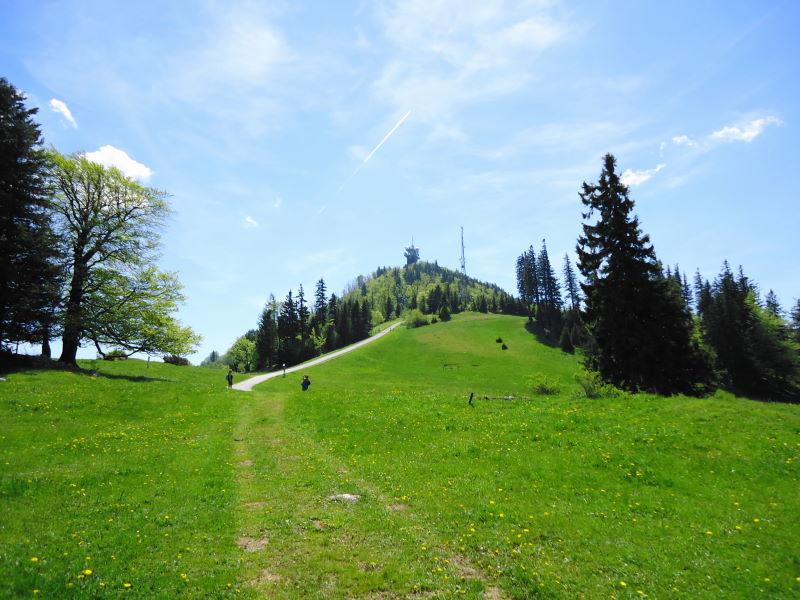 Foto: Günter Siegl / Wander Tour / Muckenkogel (1.248 m) und Hinteralm (1.313 m) / Muckenkogel  / 29.05.2014 08:48:43