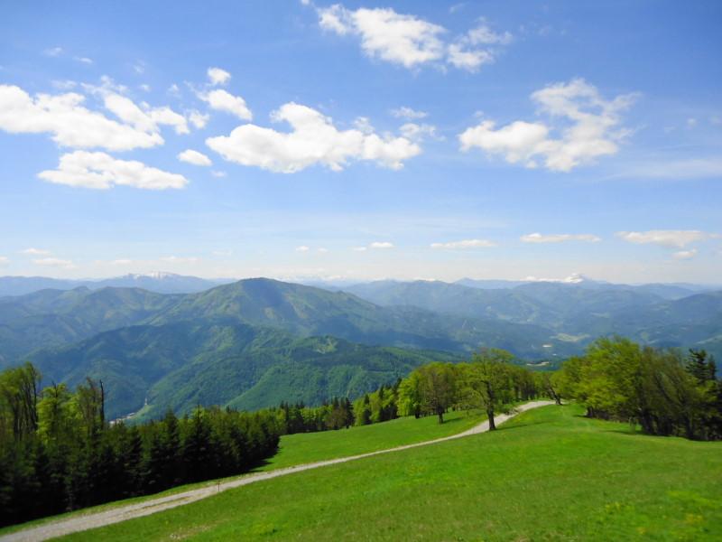Foto: Günter Siegl / Wander Tour / Muckenkogel (1.248 m) und Hinteralm (1.313 m) / Terrassenblick zum Türnitzer Höger / 29.05.2014 08:45:26