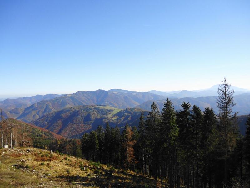 Foto: Günter Siegl / Wander Tour / Hohenstein (1.195 m) / Muckenkogel, Reisalpe / 20.11.2015 21:21:49