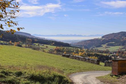 Foto: meinfal1 / Wander Tour / Höhenzug Ostrong und Peilstein (1.061 m) /  Blick ins Voralpenland vom Surbichl / 22.12.2015 23:52:01