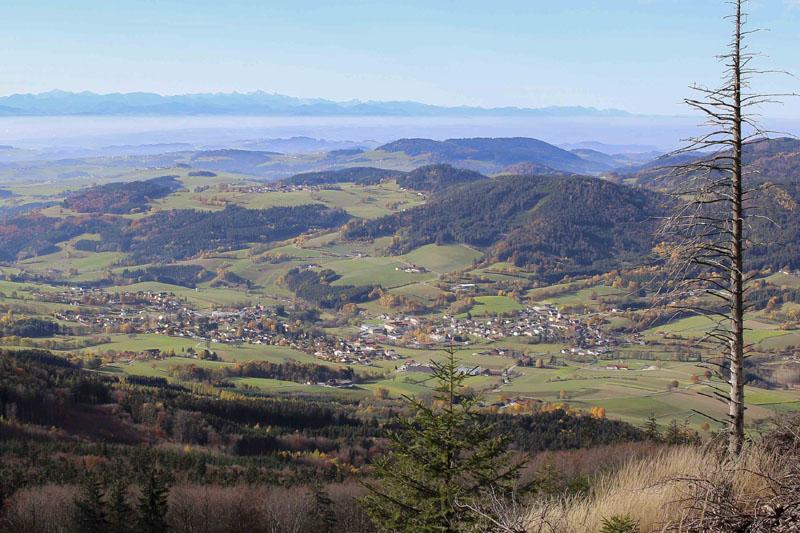 Foto: meinfal1 / Wander Tour / Höhenzug Ostrong und Peilstein (1.061 m) / Aussicht links kurz unterhalb vom gr. Peilstein/ Altenmarkt und Ysper / 22.12.2015 23:35:24