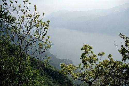 Foto: hofchri / Mountainbike Tour / Monte Altissimo (2079m) – klassisch von Torbole / 25.05.2009 22:23:11