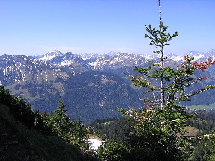 Foto: Andreas Koller / Klettersteig Tour / Friedberger Klettersteig und Steig auf die Rote Flüh (2111m) / 27.05.2009 01:12:48