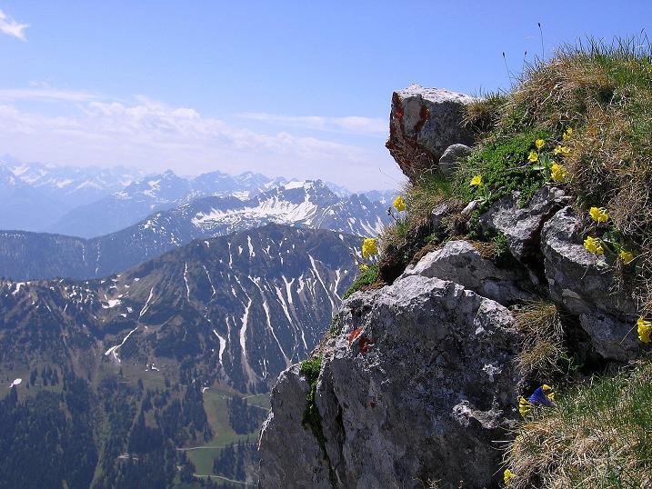 Foto: Andreas Koller / Klettersteig Tour / Friedberger Klettersteig und Steig auf die Rote Flüh (2111m) / 27.05.2009 00:56:29