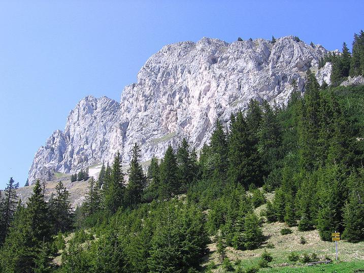 Foto: Andreas Koller / Klettersteig Tour / Friedberger Klettersteig und Steig auf die Rote Flüh (2111m) / Rote Flüh / 27.05.2009 00:51:20