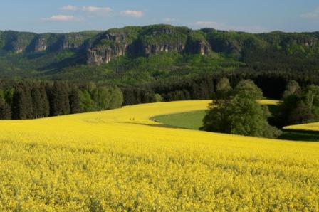 Foto: Saechsische-Schweiz / Wander Tour / 6. Etappe Malerweg / Aussicht auf das Elbsandsteingebirge / 27.05.2009 10:01:16