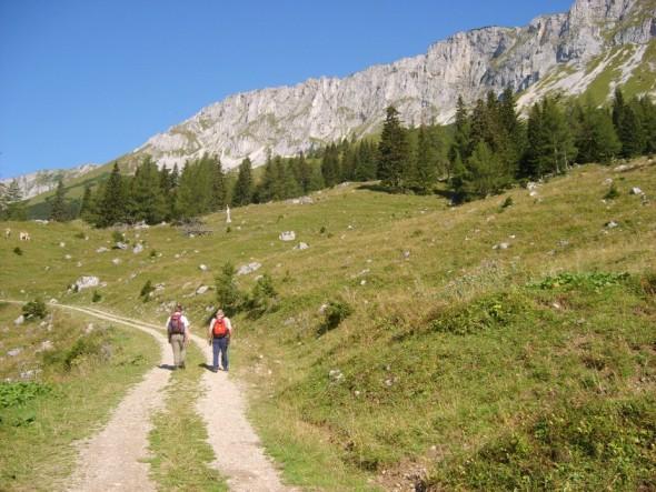 Foto: winsch / Wander Tour / Brunnalm - Goaßsteig - Kleinveitschalm - alter Almweg - Brunnalm / Richtun Weitzerhütte / 02.06.2009 13:04:54