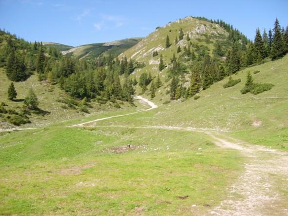 Foto: winsch / Wander Tour / Brunnalm - Goaßsteig - Kleinveitschalm - alter Almweg - Brunnalm / Rückblick: Weg von der Ebenhütte zur Goaßsteign / 02.06.2009 13:06:09