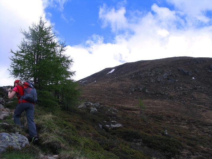 Foto: Andreas Koller / Wander Tour / Einsame Tour auf die Hochtristen (2536m) / Leicht ist der Anstieg zum Nassfeldriegel (2238 m) / 03.06.2009 21:46:18