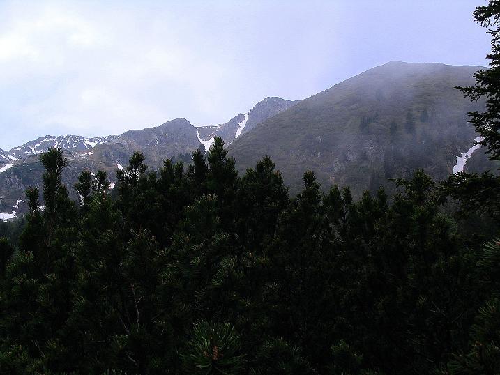 Foto: Andreas Koller / Wander Tour / Auf Gamsspuren über die Seekarspitze (2115m) / 07.06.2009 18:34:50