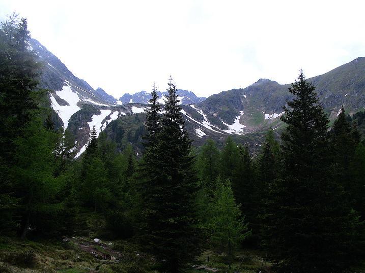 Foto: Andreas Koller / Wander Tour / Auf Gamsspuren über die Seekarspitze (2115m) / 07.06.2009 18:34:04
