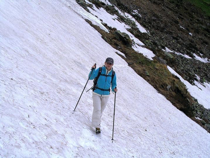 Foto: Andreas Koller / Wander Tour / Auf Gamsspuren über die Seekarspitze (2115m) / 07.06.2009 18:33:37