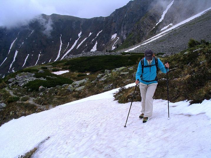Foto: Andreas Koller / Wander Tour / Auf Gamsspuren über die Seekarspitze (2115m) / 07.06.2009 18:33:25