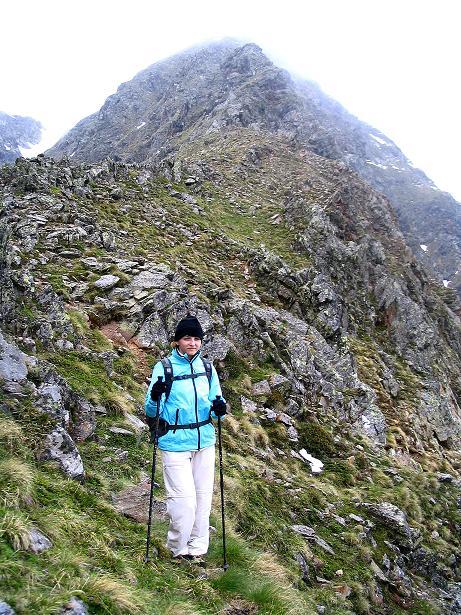 Foto: Andreas Koller / Wander Tour / Auf Gamsspuren über die Seekarspitze (2115m) / Am Grat zur Seekarspitze / 07.06.2009 18:32:39