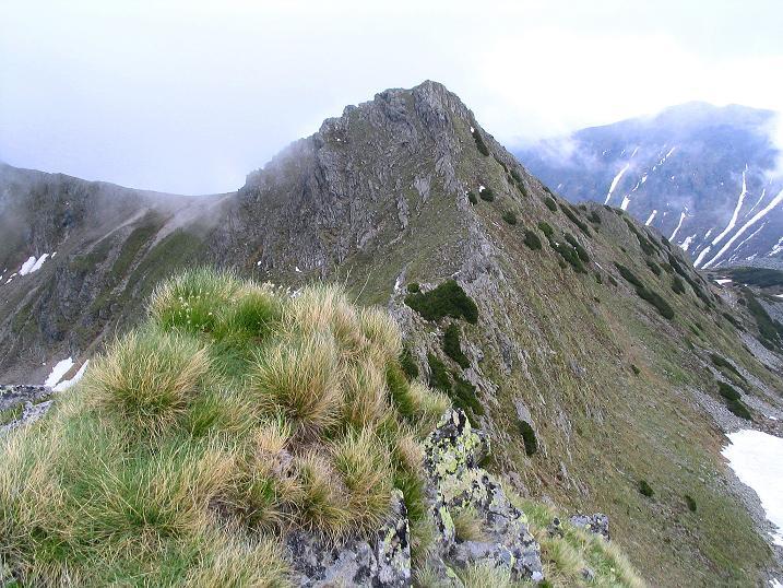 Foto: Andreas Koller / Wander Tour / Auf Gamsspuren über die Seekarspitze (2115m) / 07.06.2009 18:32:08