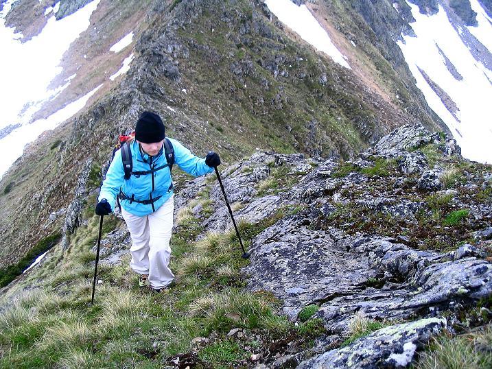 Foto: Andreas Koller / Wander Tour / Auf Gamsspuren über die Seekarspitze (2115m) / Die letzten Meter zur Seekarspitze / 07.06.2009 18:30:49