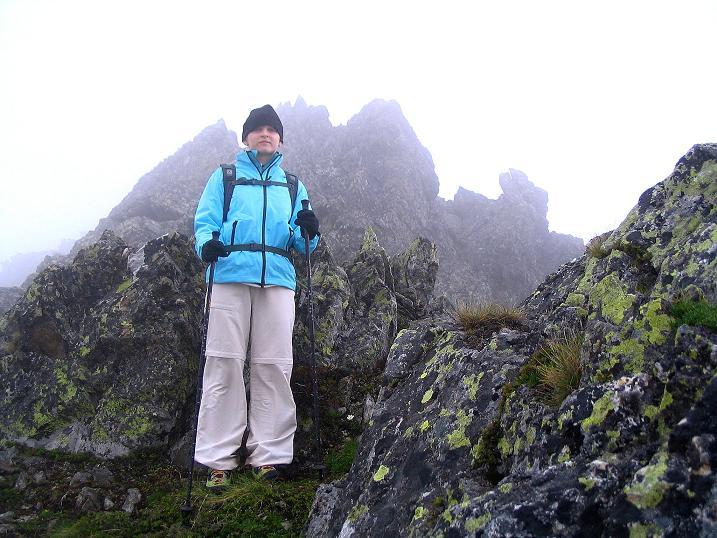 Foto: Andreas Koller / Wander Tour / Auf Gamsspuren über die Seekarspitze (2115m) / Übergang Seekarspitze - Große Rübe / 07.06.2009 18:30:12