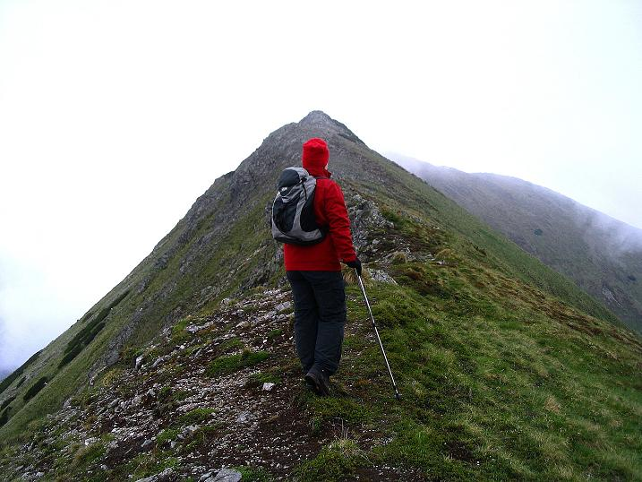 Foto: Andreas Koller / Wander Tour / Auf Gamsspuren über die Seekarspitze (2115m) / 07.06.2009 18:29:37