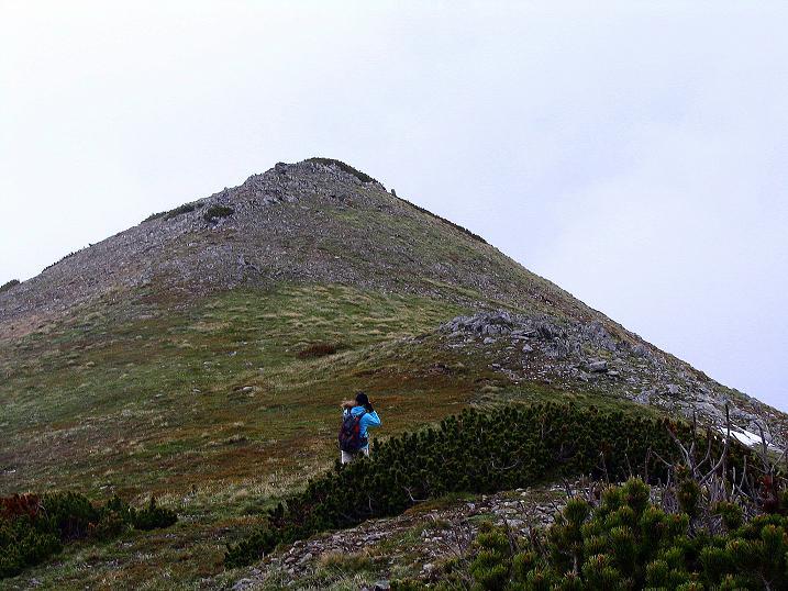 Foto: Andreas Koller / Wander Tour / Auf Gamsspuren über die Seekarspitze (2115m) / 07.06.2009 18:28:05