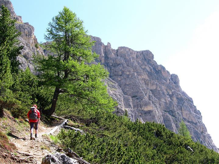 Foto: Andreas Koller / Klettersteig Tour / Via ferrata Col dei Bos / Via ferrata della Piramide (2559m) / 19.06.2009 23:42:00