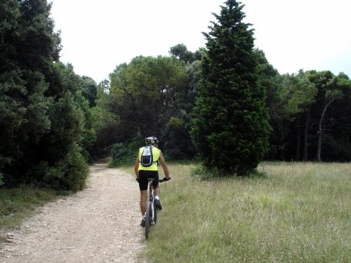 Foto: barbonis / Mountainbike Tour / Conero / 19.06.2009 23:41:12
